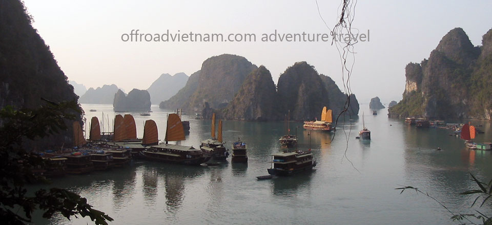 Amazing Halong Bay Cruise & Cat Ba